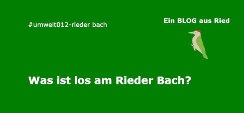 Rieder bach