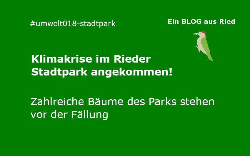 Klimakrise im Stadtpark