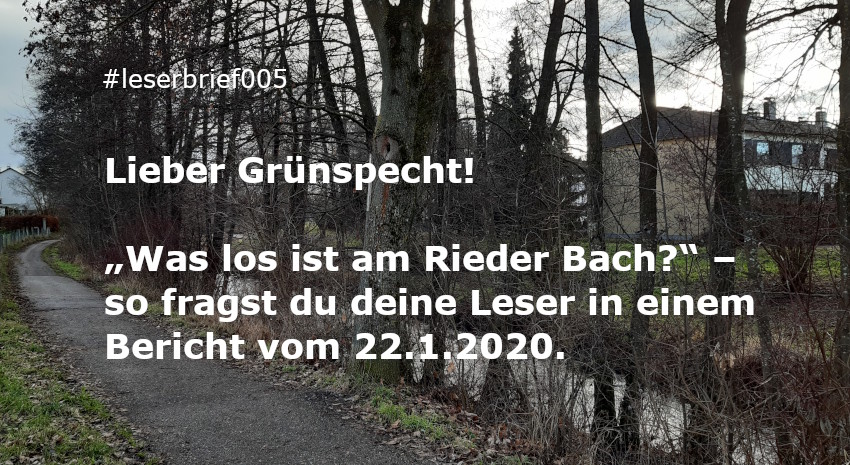 Was ist los am Rieder Bach