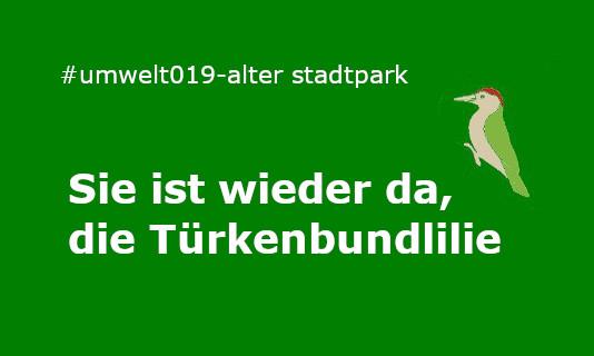 Alter Stadtpark